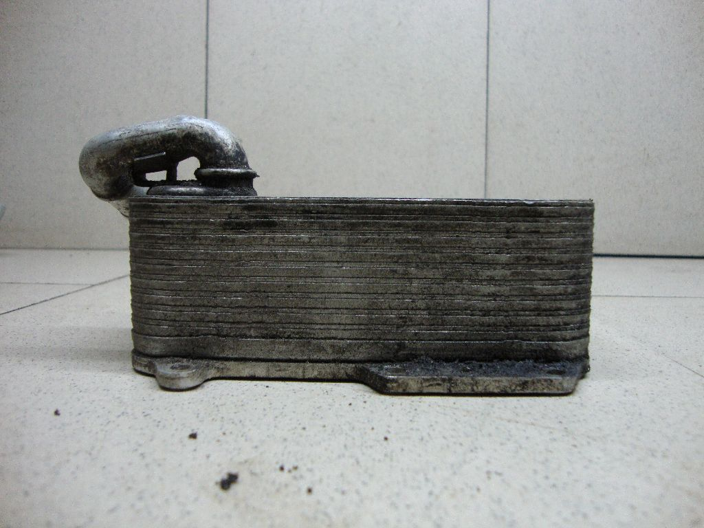 Радиатор масляный 059117021R